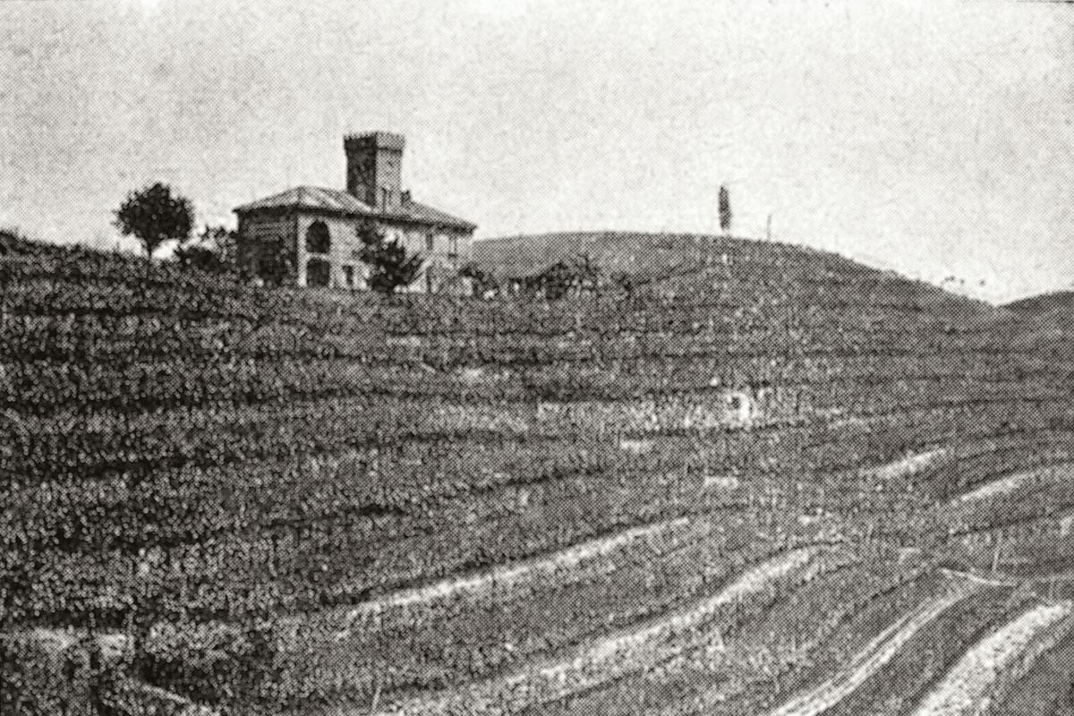 Immagine storica di Vigna Magica