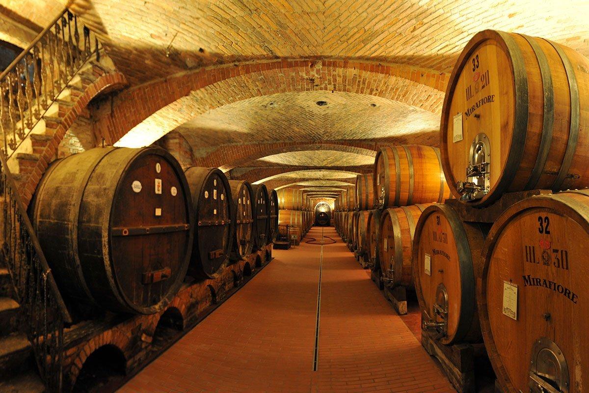 Vini - Radici & Vino